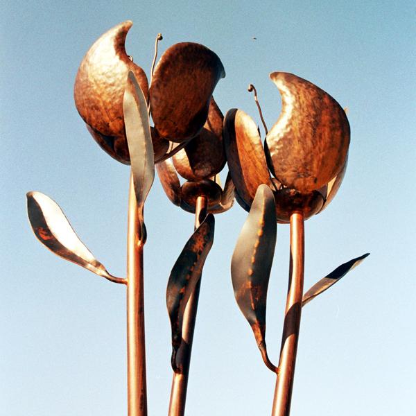 כיכר הפרחים, ישראל פרימו